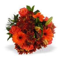 Orange Bunch MED